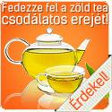 VitaKing zöld tea készítmény